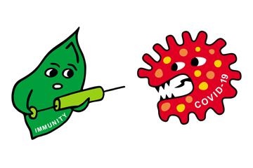 Масло для иммунитета: амарант или черный тмин?