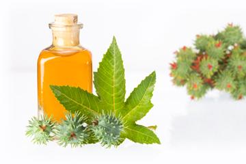 Як можна використовувати рицинову олію?