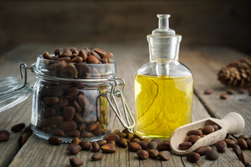 Чем интересно масло из ядер кедрового ореха?