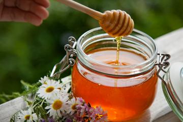 Бджолиний мед: особистий солодкий лікар